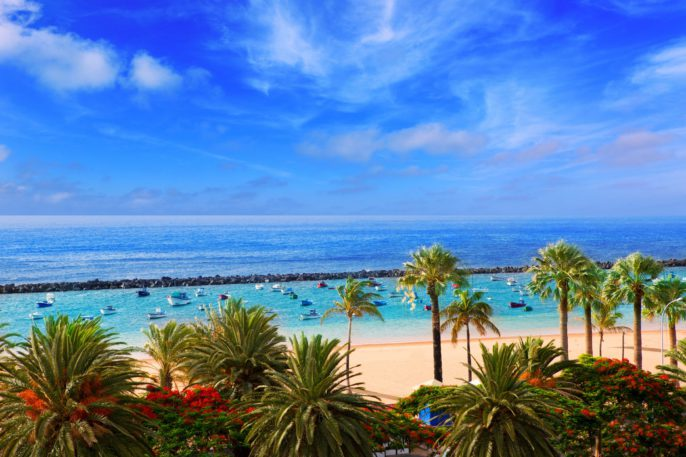 beach-las-teresitas-in-santa-cruz-de-tenerife-north-istock_000064791603_largea