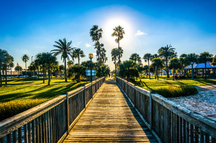 the-sun-shining-through-palm-trees-and-a-fishing-pier-in-daytona-shutterstock_248697085-2