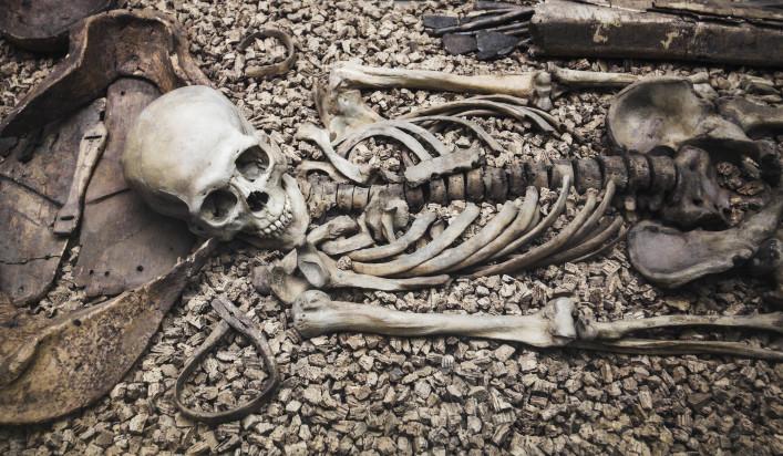 De botten van een skelet
