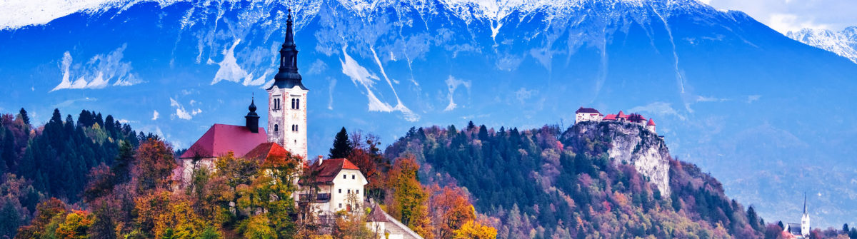 Boomhut in Slovenië