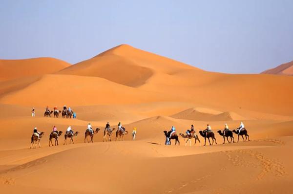 Rondreis Sahara op kamelen