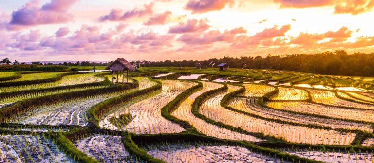 goedkoop hotel op Bali