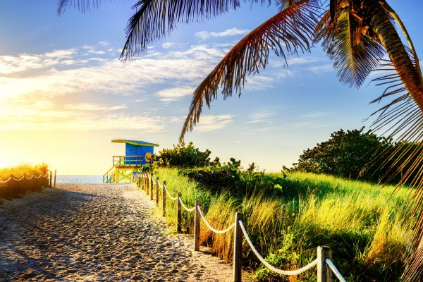 strand van florida