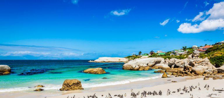 vakantie Kaapstad