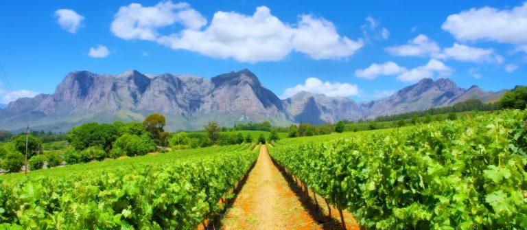 tuinroute vakantie Zuid-Afrika