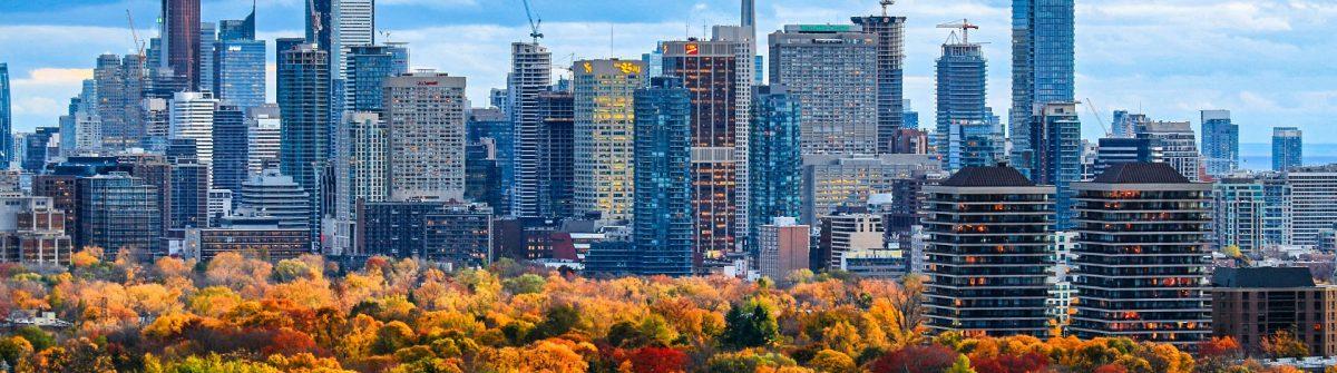 Toronto 2014 Fall Colors