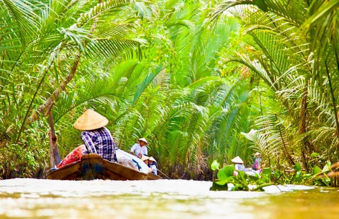 Reis Mekong Vietnam