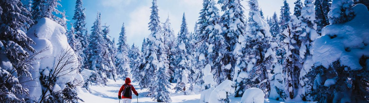 stedentrip praag met wintersport