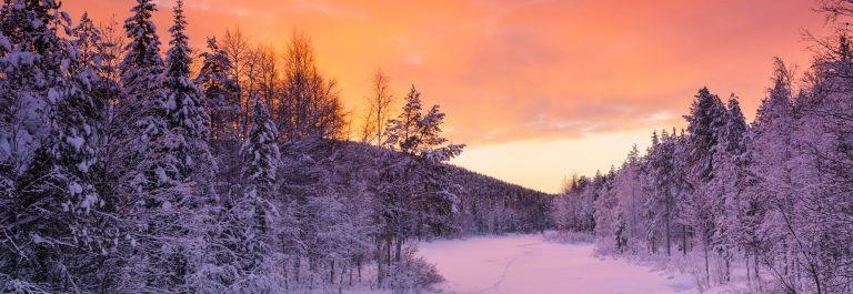 Reis Fins Lapland