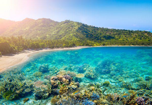 De prachtige natuur van Lombok