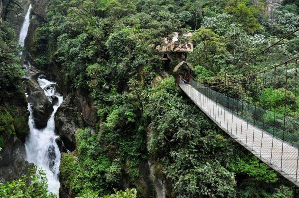 Brug langs waterval en jungle