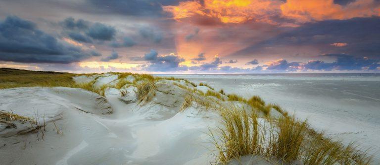 Duinen van Texel