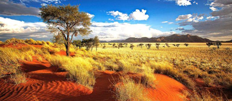 prachtig namibie