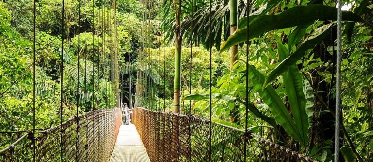 Een hangbrug in Arenal National Park
