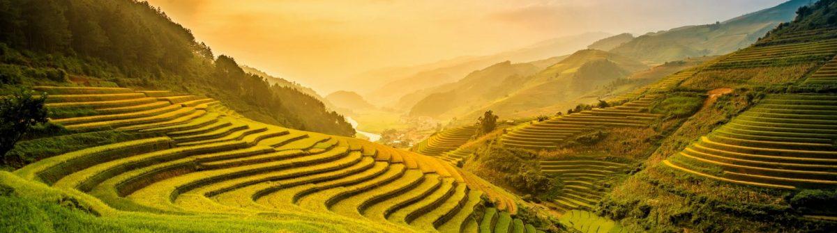 Mu Cang Chai in Vietnam