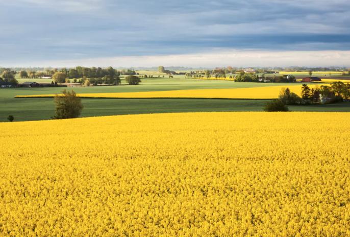 Het zuiden van Zweden