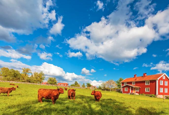 Het platteland van Zweden