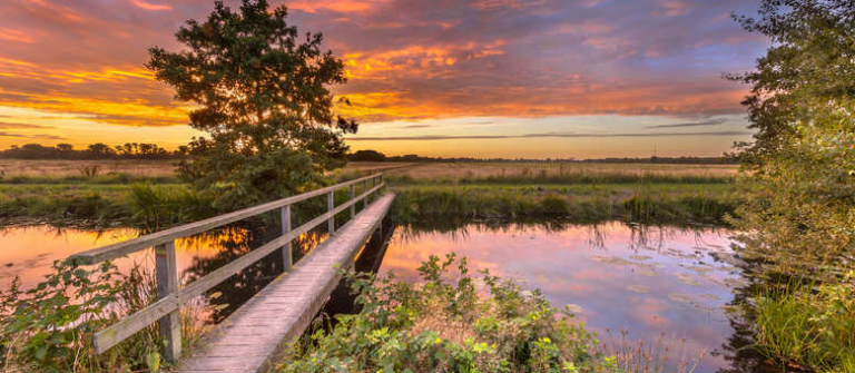 Natuur in Drenthe