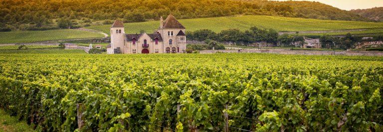 Burgundy_small_535048540