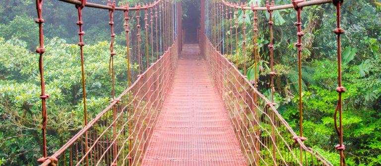 Hangbrug in Monte Verde - Costa Rica
