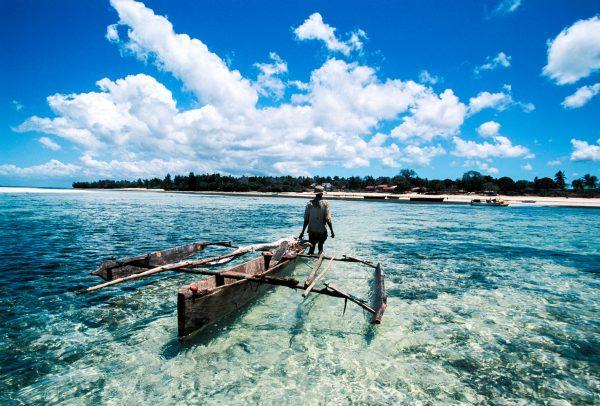 Zanzibar visser