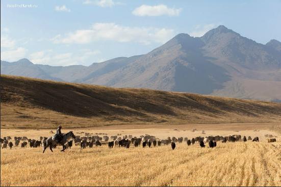 17-12Kyrgyzstan