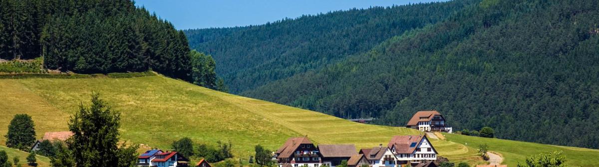 Schwarzwald Summer Baiersbronn iStock_000013689805_Large-2