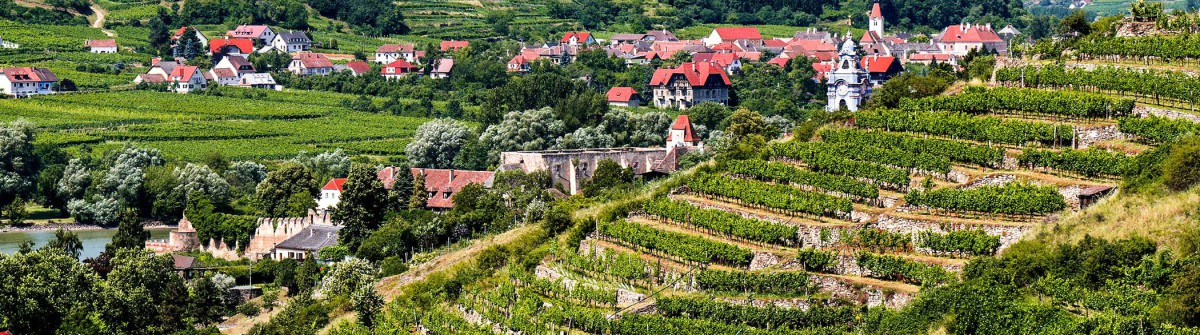 View-over-terraced-vineyards-to-Durnstein,-Wachau,-Lower-Austria-iStock_000031077984_Large-2