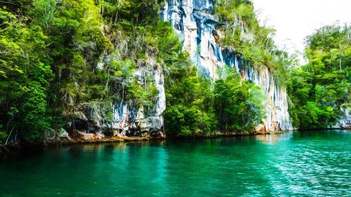 Los Haitises National Park, Bird Island, Dominican Republic iStock_000067719695_Large-2