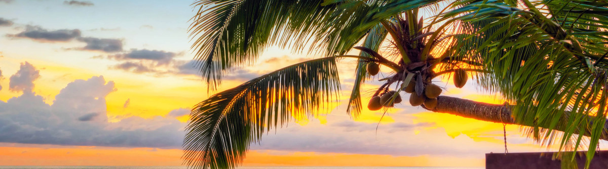 Sunset under tropical palm tree in Khao Lak Thailand iStock_000025180010_Large-2