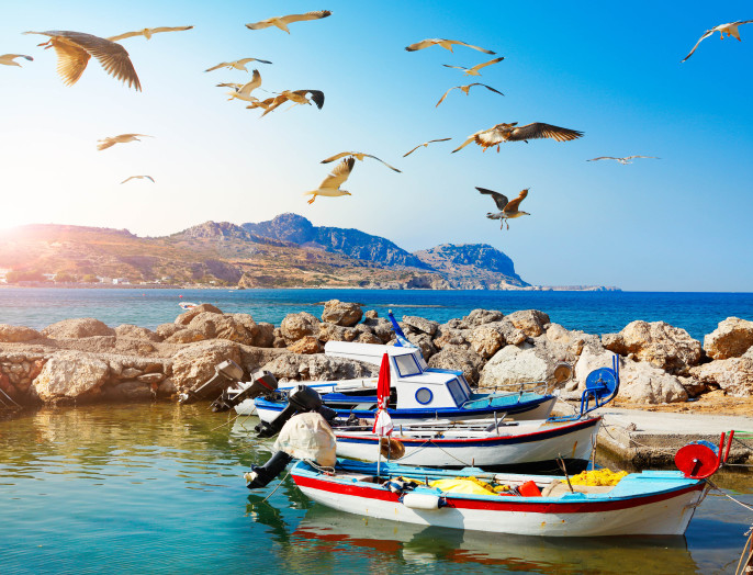 Seagulls and fishing boats at Rhodes in Greece