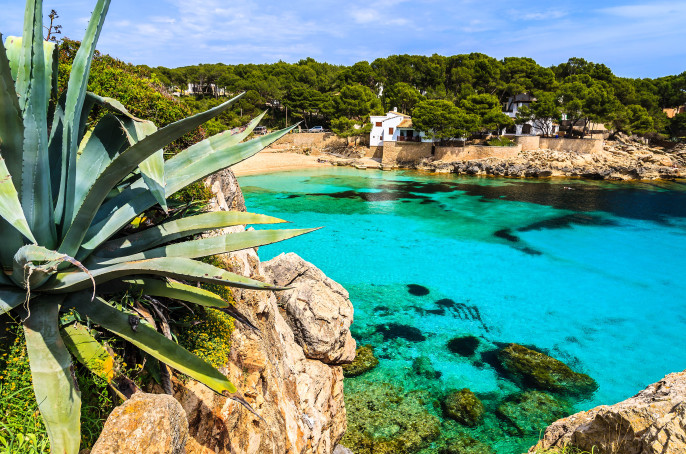 Agave palnt beach bay azure turquoise sea water hill pine tree, Cala Gat, Majorca island, Spain shutterstock_143322982-2