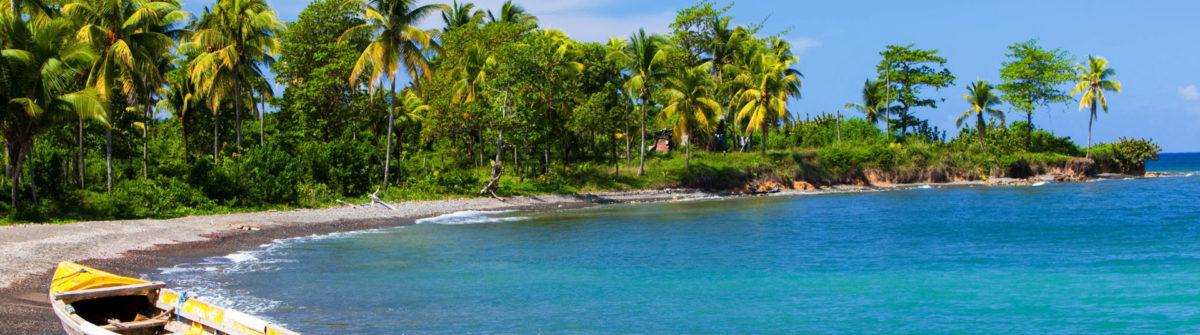 Dejta en jamaican man video land